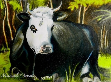 cow-sketch-copy