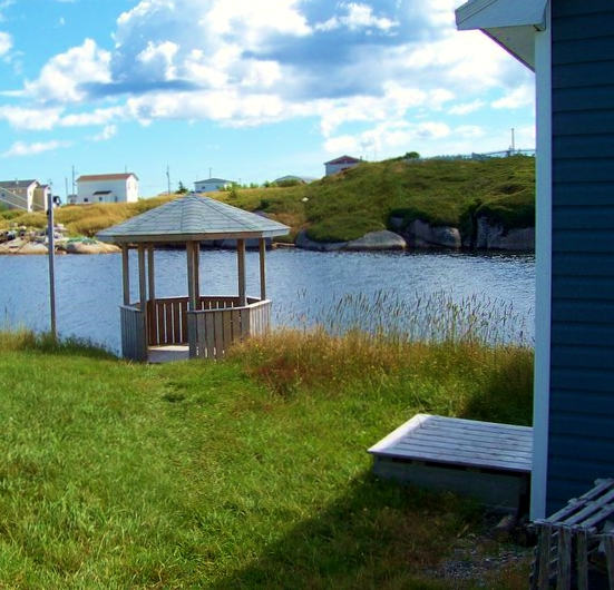 Moving to Newtown, Newfoundland in 2010