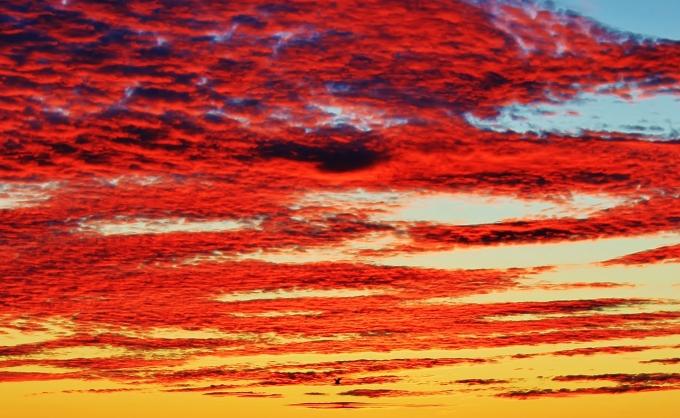 Mackerel Sky, Newtown, NL