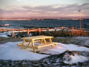 picnic table in a winter garden